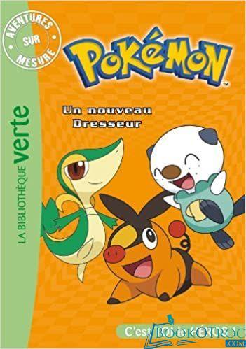 Pokemon, Un nouveau dresseur