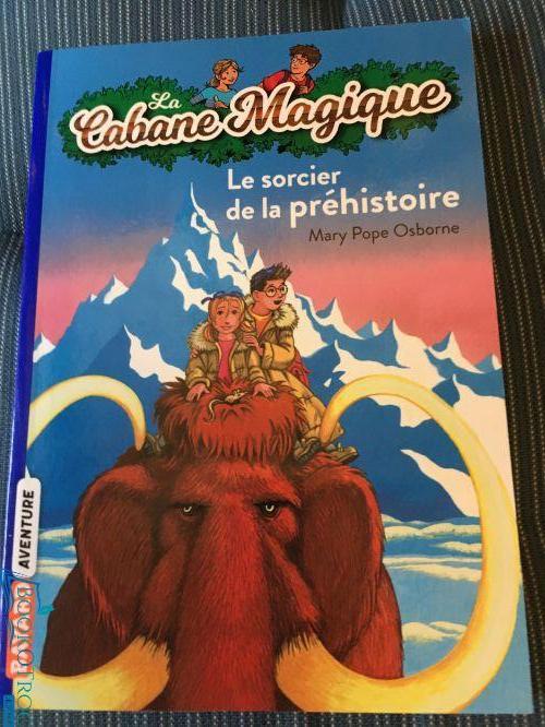 Le sorcier de la prehistoire (Cabane Magique Volume 6)