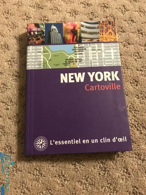 New York cartoville